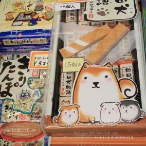 akita dog souvenir-1